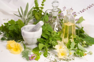 holistic-herbs-and-oils.jpg